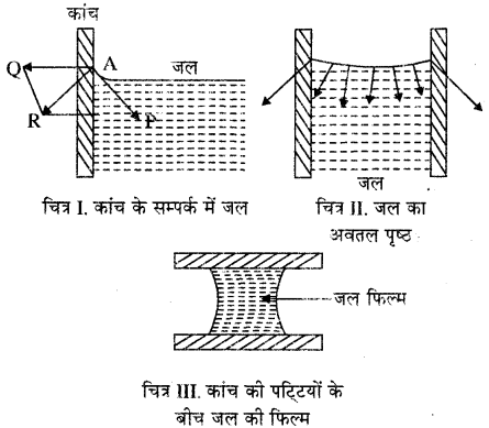 RBSE Solutions for Class 11 Physics Chapter 11 तरल 1