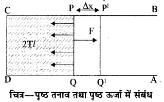 RBSE Solutions for Class 11 Physics Chapter 11 तरल 10