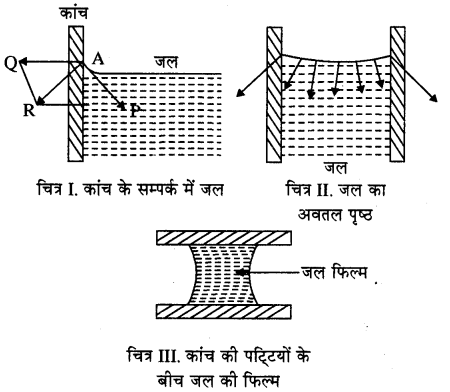 RBSE Solutions for Class 11 Physics Chapter 11 तरल 11