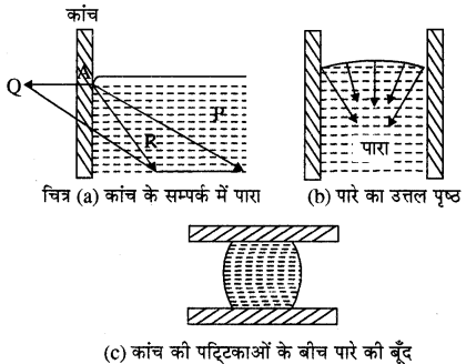 RBSE Solutions for Class 11 Physics Chapter 11 तरल 12