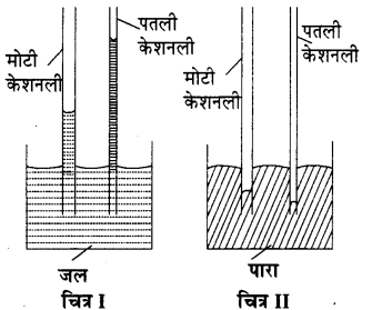 RBSE Solutions for Class 11 Physics Chapter 11 तरल 13