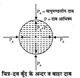 RBSE Solutions for Class 11 Physics Chapter 11 तरल 19