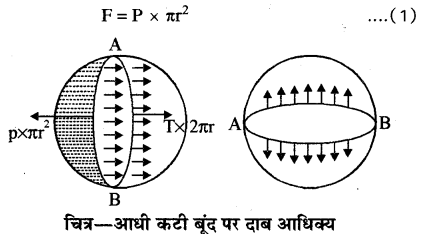 RBSE Solutions for Class 11 Physics Chapter 11 तरल 20