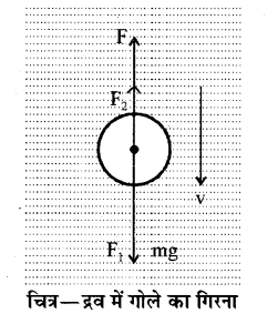 RBSE Solutions for Class 11 Physics Chapter 11 तरल 7