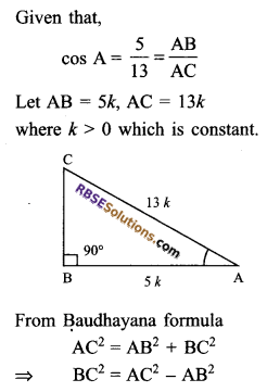 RBSE Solutions for Class 9 Maths Chapter 14 Trigonometric Ratios of Acute Angles Ex 14.1 - 9