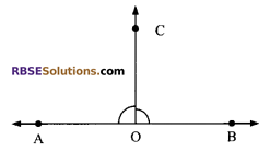 RBSE Solutions for Class 9 Maths Chapter 5 Plane Geometry and Line and Angle Additional Questions 17