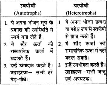 RBSE Solutions for Class 9 Science Chapter 13 पर्यावरण 8