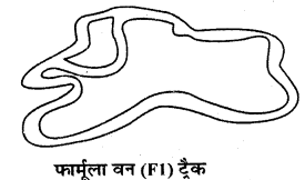 RBSE Solutions for Class 9 ScienceChapter 16 सड़क सुरक्षा 3