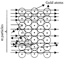 RBSE Solutions for Class 9 Science Chapter 3 Atomic Structure 3