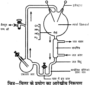RBSE Solutions for Class 9 Science Chapter 5 जीवन की अवधारणा 1