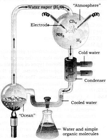 RBSE Solutions for Class 9 Science Chapter 5 Concept of Life 1