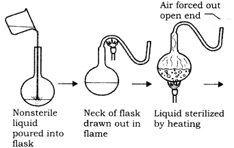 RBSE Solutions for Class 9 Science Chapter 5 Concept of Life 3