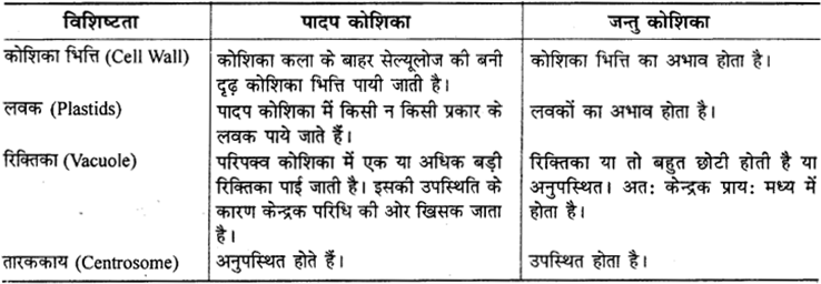 RBSE Solutions for Class 9 Science Chapter 6 सजीव की संरचना 2