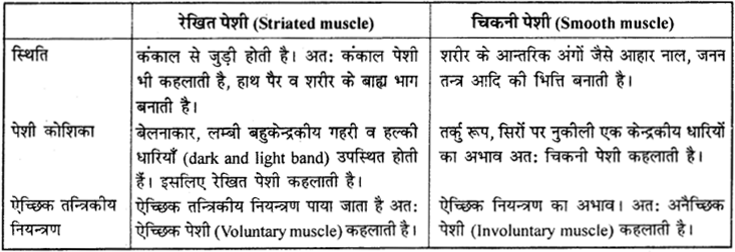 RBSE Solutions for Class 9 Science Chapter 6 सजीव की संरचना 26