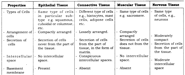 RBSE Solutions for Class 9 Science Chapter 6 Structure of Living Organisms 26